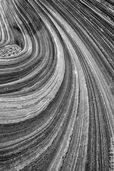Swirls (Eddie 11uisma) Tags: coyote arizona white black southwest monument landscapes desert north wave cliffs national american eddie vermillion the buttes lluisma