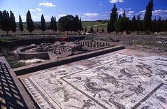 Casa de Neptuno 36 (Rafael Jimnez) Tags: espaa archaeology sevilla spain 1988 slides diapositivas arqueologa santiponce arteromano itlica aboutiberia