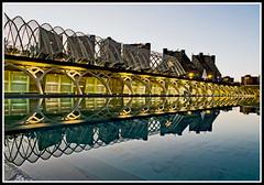 La ciudad y su espejo (edomingo) Tags: edomingo olymposomdem5 mzuico14150 valencia horaazul cac omdem5 reflejos em5 uro