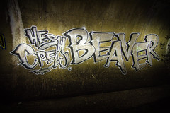 BEAVER (TheLost&Found) Tags: street bridge winter light urban west color art saint minnesota wall train canon bench paul typography photography eos graffiti midwest long exposure paint image expression painted letters creative tracks cities minneapolis twin msp rail tunnel best beaver drain explore mpls crew photograph 7d imaging helix graff minds aerosol exploration fails mn hc mid freight rolling beav 612 lightroom urbex jist hesh paulz benched benching thelostfound