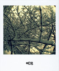 "#DailyPolaroid #14-1-13 #108 • <a style=""font-size:0.8em;"" href=""http://www.flickr.com/photos/47939785@N05/8396250782/"" target=""_blank"">View on Flickr</a>"