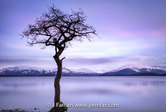 millarochy bay (John Farnan Photography) Tags: longexposure scotland scottish lochlomond snowcappedmountains colourimage scottishloch scottishlochs locjlomond