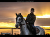 Knight Benghazi . . (العقوري [ Libya Photographer ]) Tags: canon eos libya ابراهيم تصوير حصان ليبيا خيل 60d احصنه خيول فرسان بنغازي klunz العقوري احصنة