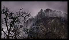 Schlossberg (Frank_F.P.) Tags: old blue winter mountain cold tree castle berg stone dark frost cloudy alt ruin foggy violet ruine ramen frame mystical blau schloss kalt stein baum hohenems dunkel myst mystisch neblig