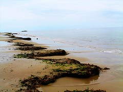 Day at Grandview Beach 09-16-2012 (46) (THE Halloween Queen) Tags: sea beach water sand surf shoreline