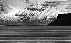Icelandic coast abstract in mono (lunaryuna) Tags: iceland northiceland saudarkrokur coast landscape landscapeabstract water fjord coastallagoon waterlines snowcappedmountains buff blackvolcanicrock lunaryuna blackwhite bw monochrome