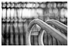 Curves (leo.roos) Tags: curves curved bikerack bicyclerack fietsenrek konishirokuhexanon4719 konicaautos fixedlensrefittedfordigital mountconversion vastelens adaptedtoemount darosa leoroos