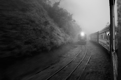 Train (marcelo.guerra.fotos) Tags: train morretes curitiba paran blackandwhite blancoynegro transport transportation publictransport canon noiretblanc