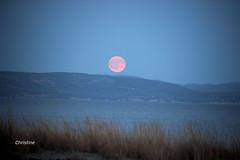 IMG_6214 (christine.morenin) Tags: full moon  pleine lune sea mer fullmoon