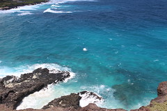 Makapu'u Beach (jjandames) Tags: makapuubeach hawaii oahu 2016