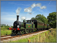 W8 Freshwater, Whitefield Crossing (Jason 87030) Tags: aix locomotive steam engine loco green souther iow island isleofwight preserved little nice freshwater line w8 8 terrier holiday august 2016 whitefieldcrossing kettle ts location lineside greatbritain computer visiting effect exhibition portfolio camera shot site photostream fascination extreme visit display vista weather season unitedkingdom media amateur