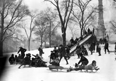 1924 Boston Boys sledding on Boston Common (Historicimage) Tags: boston oldboston vintageboston oldbostonphoto bostoncommon sledding wintersledding bostonchildren vintagechildhood