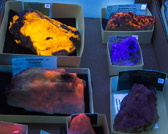 DUH_7112r (crobart) Tags: fluorescent minerals gem mineral club scarborough toronto show