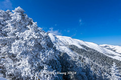 Harry_30838,,,,,,,,,,,,,,,,,,,,,,Hehuan Mountain,Taroko National Park,Snow,Winter (HarryTaiwan) Tags:                      hehuanmountain tarokonationalpark snow winter mountain     harryhuang   taiwan nikon d800 hgf78354ms35hinetnet adobergb
