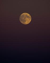 Moon Shot (maytag97) Tags: maytag97 moon tamron 150 600 150600 fullmoon bignastyhillclimbevent bignastyhillclimb