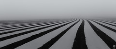 No Line on the Horizon... (fearghal breathnach) Tags: nolineonthehorizon leadinglines lines miminalist miminalism abstract blackwhite monochrome wideangle ultrawide panorama pano panoramic fog indistinct mystery gloom shadows bw