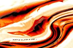 the caravan in the wadi (HansHolt) Tags: wadi uadi oued caravan karavaan caravana caravane karawane cameltrain camel kameel camello chameau kamel trampeltier orange oranje abstract canon 6d canoneos6d canonef100mmf28macrousm