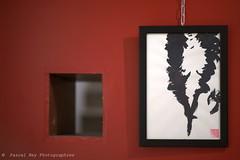 _DSC2191_v1 (Pascal Rey Photographies) Tags: exposition exhibition dessin dessins encrechinoise aquarelles clinemariegisbert