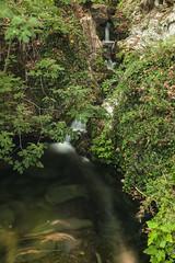 IMG_8486 (petrosli) Tags: water trees nature canon eos500d eos