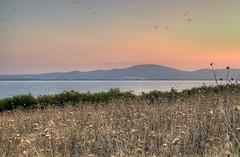 Остров Свети Иван\St. Ivan Iseland, Bulgaria (lights2008) Tags: болгарія българия bulgaria