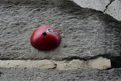 Intra Larue 821 (intra.larue) Tags: intra urbain urban art moulage sein pecho moulding breast teta seno brust formen tton street arte urbano pit paris france boob urbana peto