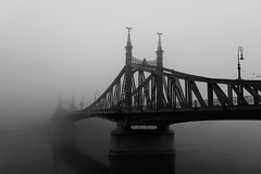 (not so) simple geometry 10 - liberty bridge (wunderskatz) Tags: city morning bridge urban fog architecture river landscape liberty dawn europe hungary shot geometry budapest simplicity simple danube buda pest daybreak