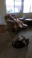 Dad and Jez napping (delight.1027) Tags: napping marsh jezebel