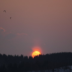 Today's sunset (_kaochan) Tags: sunset sky japan landscape hokkaido sora kushiro