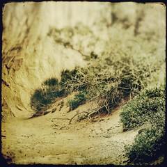 utah wash (jssteak) Tags: cliff canon square utah desert grunge dry ground aged textured ttv fauxttv t1i inthespiritofttv