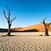 "Deadvlei Sossusvlei Namibia • <a style=""font-size:0.8em;"" href=""https://www.flickr.com/photos/21540187@N07/8292736670/"" target=""_blank"">View on Flickr</a>"