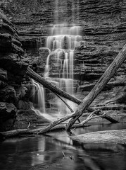 Matthiesen Lake Waterfall (rseidel3) Tags: park trees blackandwhite lake water forest waterfall utica starvedrock