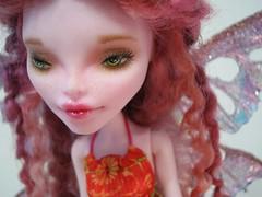 Sally Monella5 (annarchy78) Tags: monster high vampire cam fairy create custom repaint