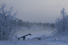 River and some old Junk (MichelleLegere) Tags: canada fog river frost yukon whitehorse yt yukonterritory