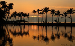 Hawaii  5561   EXPLORED December 24, 2012 (Bonnieg2010) Tags: sunset usa reflection hawaii palmtrees bigislandofhawaii hawaiisunset explored bonniegrzesiak