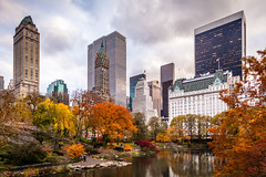 Central Park In Fall (Mabry Campbell) Tags: nyc newyorkcity november autumn trees usa ny newyork reflection building nature water colors leaves skyline buildings reflections photography us photo colorful cityscape unitedstates centralpark manhattan fallcolors unitedstatesofamerica autumncolors photograph fallen 400 24mm 2012 f35 newyorkcounty tse24mmf35l nycphotowalk nycworkshop ¹⁄₂₀₀sec mabrycampbell november132012 201211139086