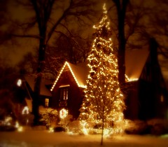 Winter Wonderland (Renee Rendler-Kaplan) Tags: lighting street trees houses homes winter decorations white snow home night dark lights evening december glow gbrearview darkness bright kodak centralpark warmth neighborhood lit kodakeasyshare evanston snowfall wreaths winterwonderland gapersblock 2012 wbez fridaynightlights freshlyfallensnow chicagoist evanstonillinois coldout reneerendlerkaplan