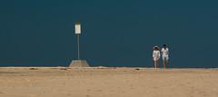 Warning ! Humans about. (Robert Brindley) Tags: australianbeach beach bluesky coupleonbeach fingallbay newsouthwales portstephens sandandsky