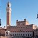 View of the Palazzo Pubblico