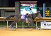 2012-11-01 (127) r8 Nicolas J. Milford on #10 Unhinched (JLeeFleenor) Tags: horses caballo cheval uma cal westvirginia jockeys horseracing cavallo cavalo pferd equestrian kin kuda alogo equine hest thoroughbreds soos hevonen cuddy paard cavall kon koin 馬 hast charlestownraces häst ceffyl лошадь 马 koń faras hestur סוס perd thoroughbredracing حصان konj кон άλογο घोड़ा capall beygir yarraman pfeerd