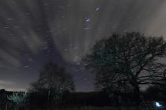 Test Shot with New 10-22mm Startrail (boddle (Steve Hart)) Tags: uk trees sky tree night canon woodland stars star steve trail orion hart steven nightsky coventry startrail 600d wyken boddle startrailsexe startrailstartrails