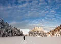 ... (Svein Nordrum) Tags: winter light sky lake snow cold nature clouds landscape outdoors scenery skiing wide crosscountry xcskiing nordmarka kalvsjen