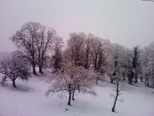 And the Dordogne snow continues to fall