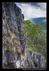 037_Yarrangobilly Caves - Summer Australian Alps (Gary Hayes) Tags: mountains alps birds river snowy lakes australia caves rivers adaminaby eucumbene yarrangobilly