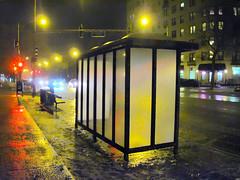 empty bus shelter (renee_mcgurk) Tags: winter chicago illinois nightshot streetlamps streetlights busstop busshelter softfocus busstation redlights icyroads rogerspark neonglow transitstation trafficights reneemcgurk nearcornerofchaseandsheridan