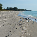 Gulf of Mexico thumbnail
