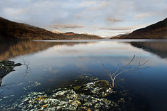 Winter reflection (Andy Magee) Tags: winter sky cloud reflection water canon landscape scotland loch tamron trossachs lochlomond