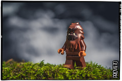 Close encounters of the furry kind (Priovit70) Tags: lego minifig bigfoot woods waterfall olympuspenepl7