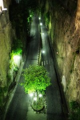 The Road (leewoods106) Tags: sorrento italy europe night outdoor light lights road cobbles green tree trees vegitation view viewpoint trip vacation holiday holidays journey travel traveler traveling canon eos m photo photos photography photographer incredible places must see beautiful