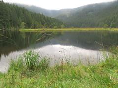 Der Kleine Arbersee (Waldrebe) Tags: bayerischerwald lake bavaria