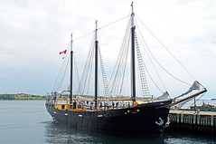 NS-02417 -Silva (archer10 (Dennis) 80M Views) Tags: halifax sony a6300 ilce6300 18200mm 1650mm mirrorless free freepicture archer10 dennis jarvis dennisgjarvis dennisjarvis iamcanadian novascotia canada waterfront harbour boat ship tallship silvia three masted schooner